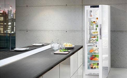 Vrijstaande koelkast - Electro World